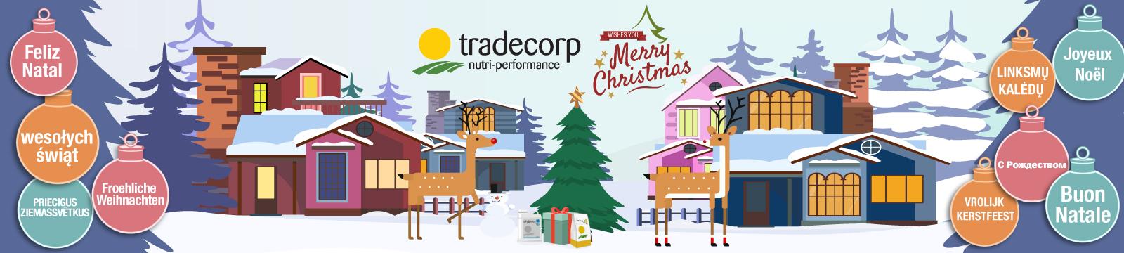 Wesołych Świąt 2018 od Tradecorp !