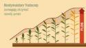 Biostymulatory i środki ochrony roślin (ś.o.r.)